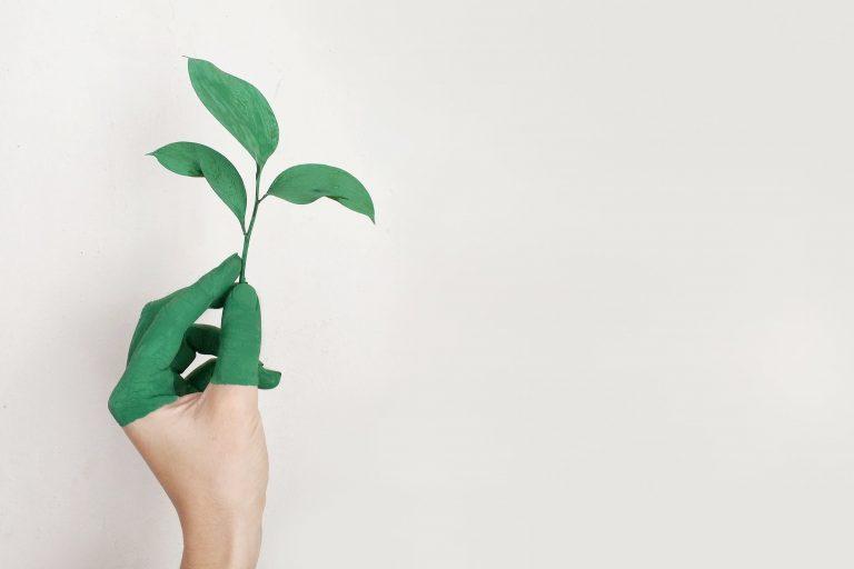 Dag van de Duurzaamheid - Marketingbureau Pull Position