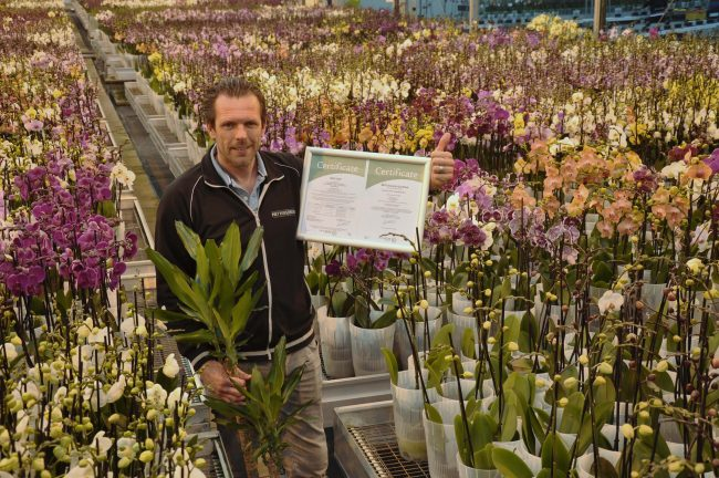 Sander Vijverberg MPS-GAPSQ MPS Product Proof- Piet Vijverberg