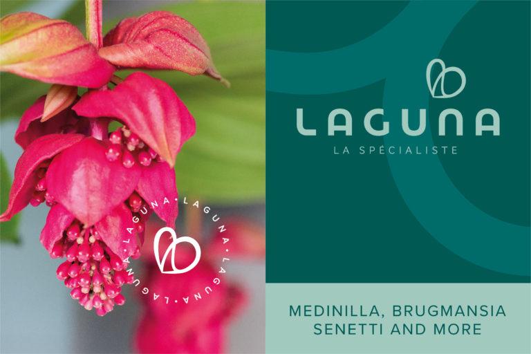 Het nieuwe beeldmerk van Laguna